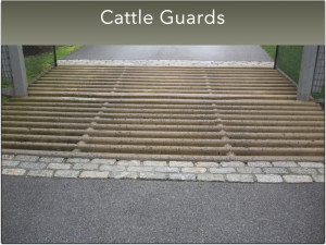 G- Small Cattle Guards (2)